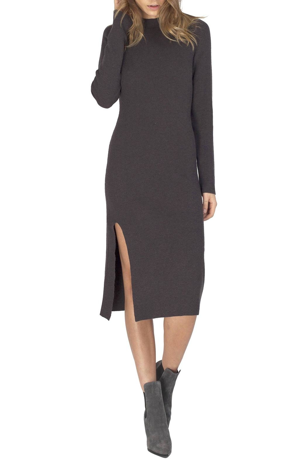 Gentle Fawn Quinn Sweater Dress - Main Image