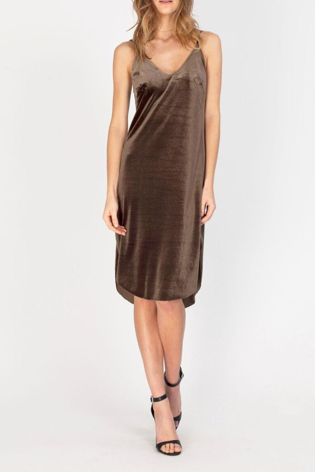 Gentle Fawn Velvet Slip Dress - Main Image