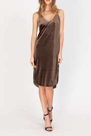 Gentle Fawn Velvet Slip Dress - Product Mini Image