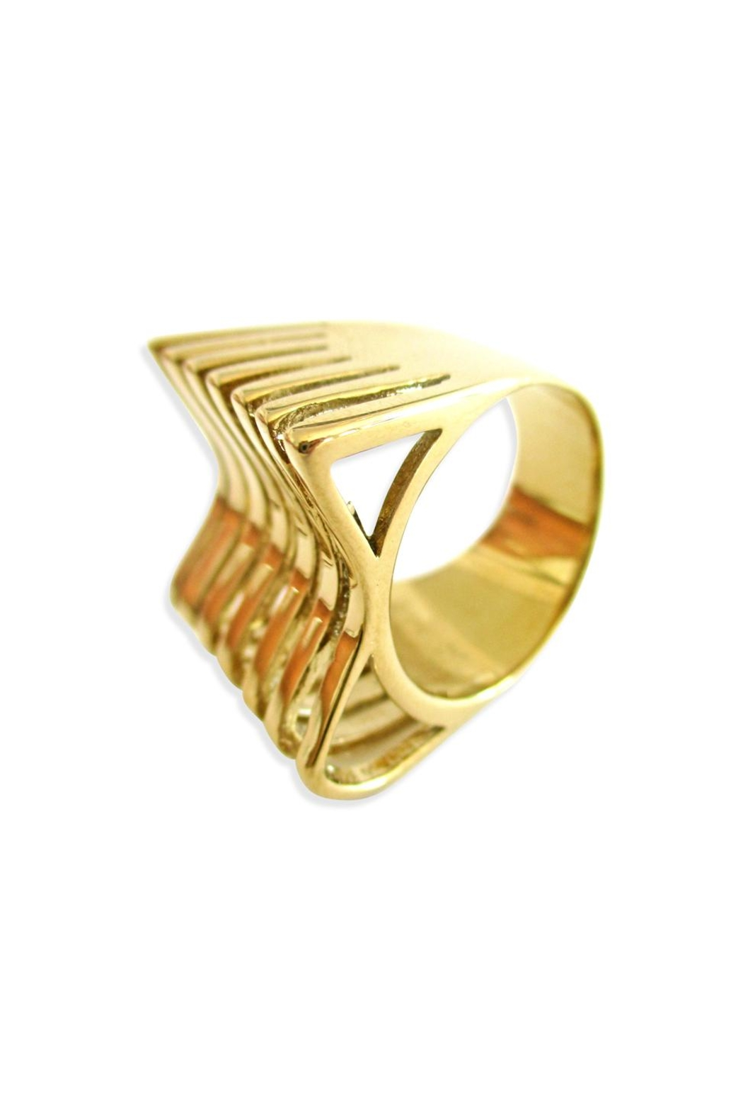 Malia Jewelry Geometric Goldplated Ring - Front Cropped Image