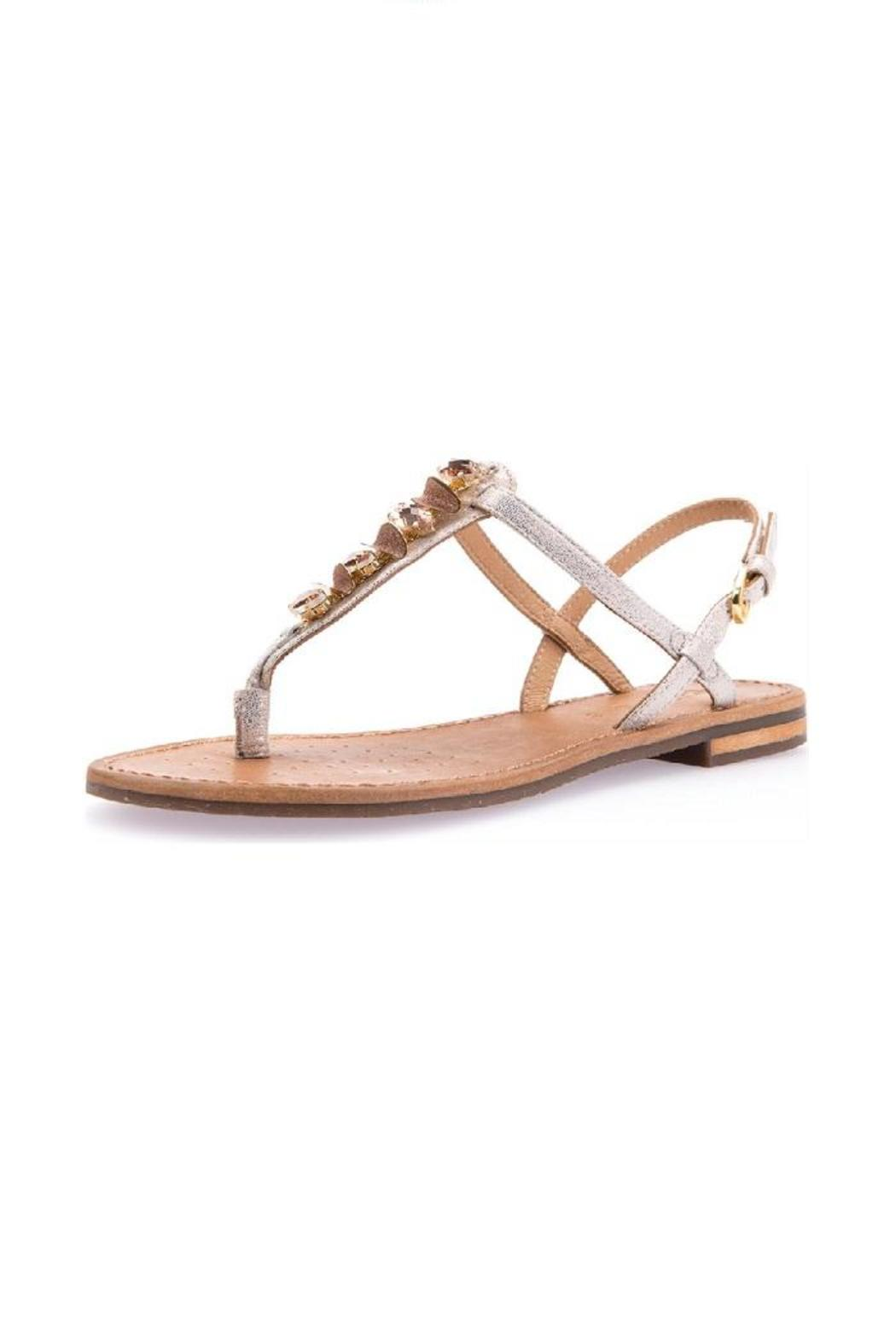 bd9ccca743 Geox Rose-Gold Sandal from Canada by Modern Sole — Shoptiques