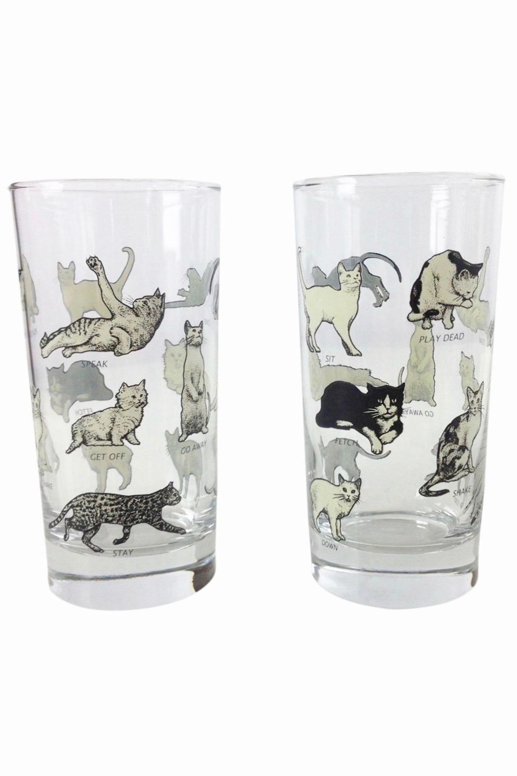 GHome2 Cat Poser Glasses - Front Cropped Image