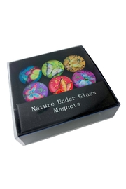 GHome2 Glass Butterfly Magnets - Product Mini Image