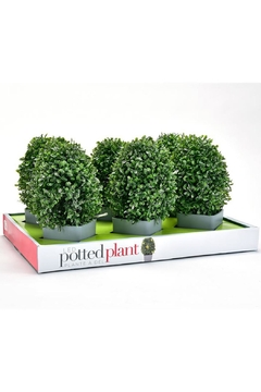 Giftcraft Inc.  Led Lighted Plant - Alternate List Image