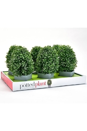 Giftcraft Inc.  Led Lighted Plant - Product Mini Image