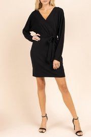 Gilli Long Sleeve Dress - Front cropped