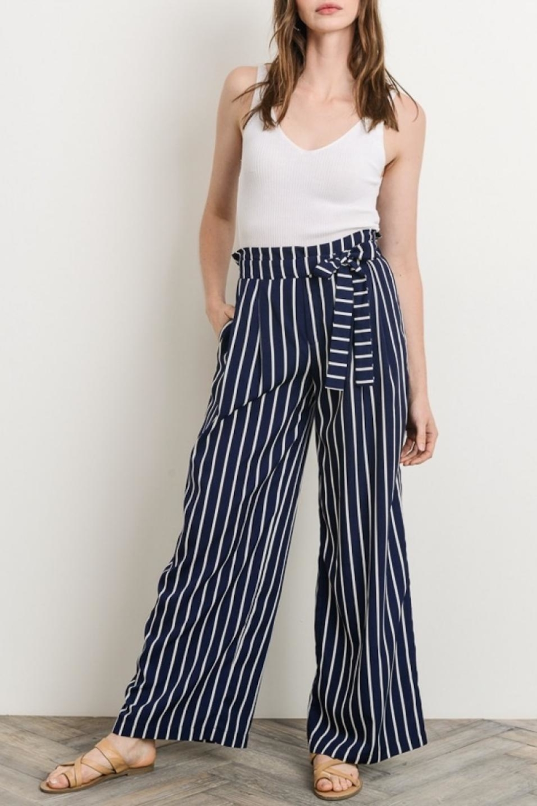 Gilli Navy Striped Pants - Front Cropped Image