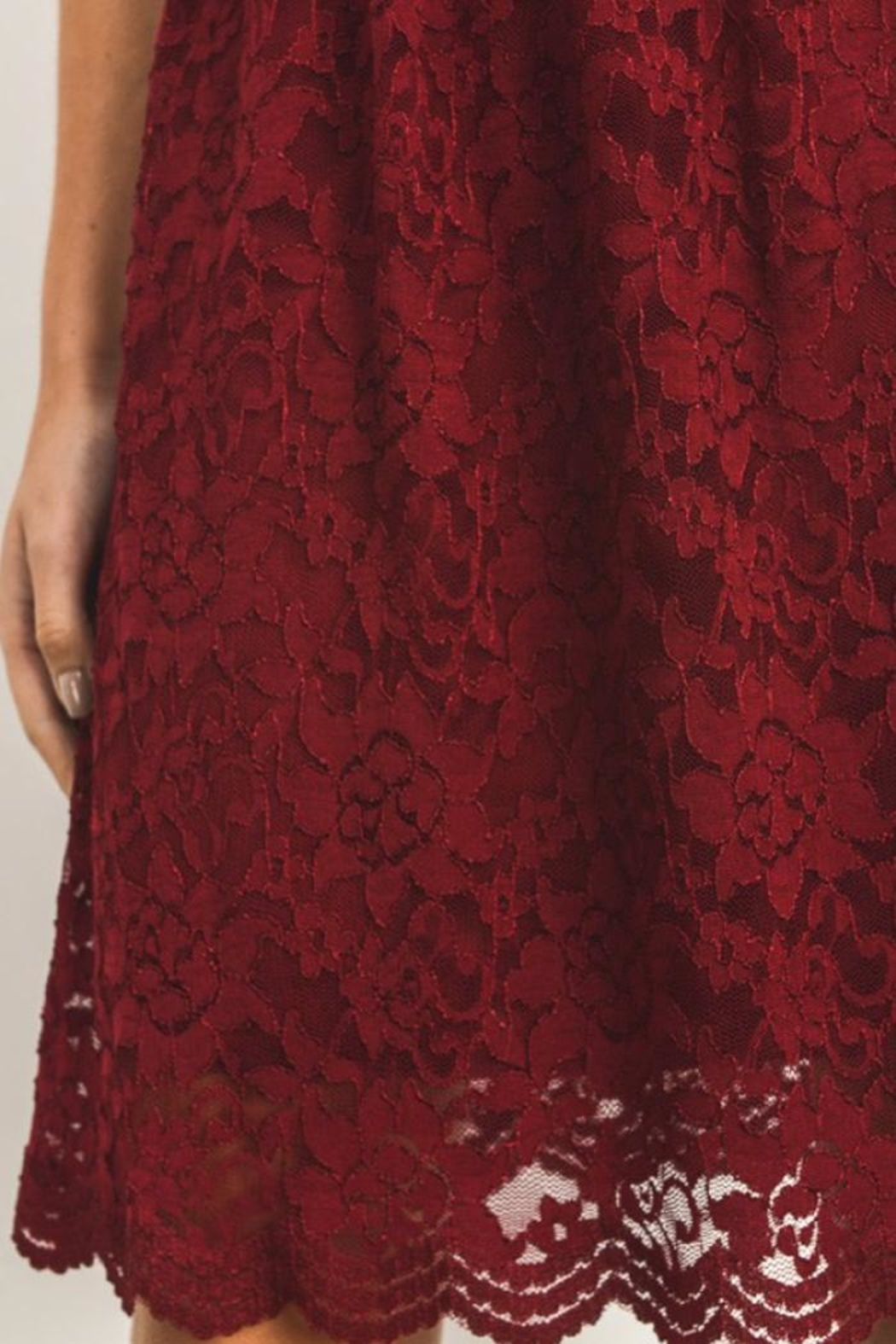 Gilli Red Lace Dress - Back Cropped Image