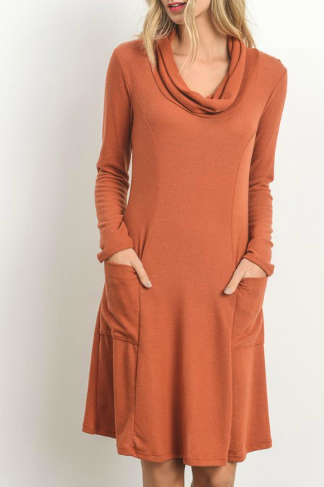 Gilli Soft-Knit Sweater Dress - Front Cropped Image