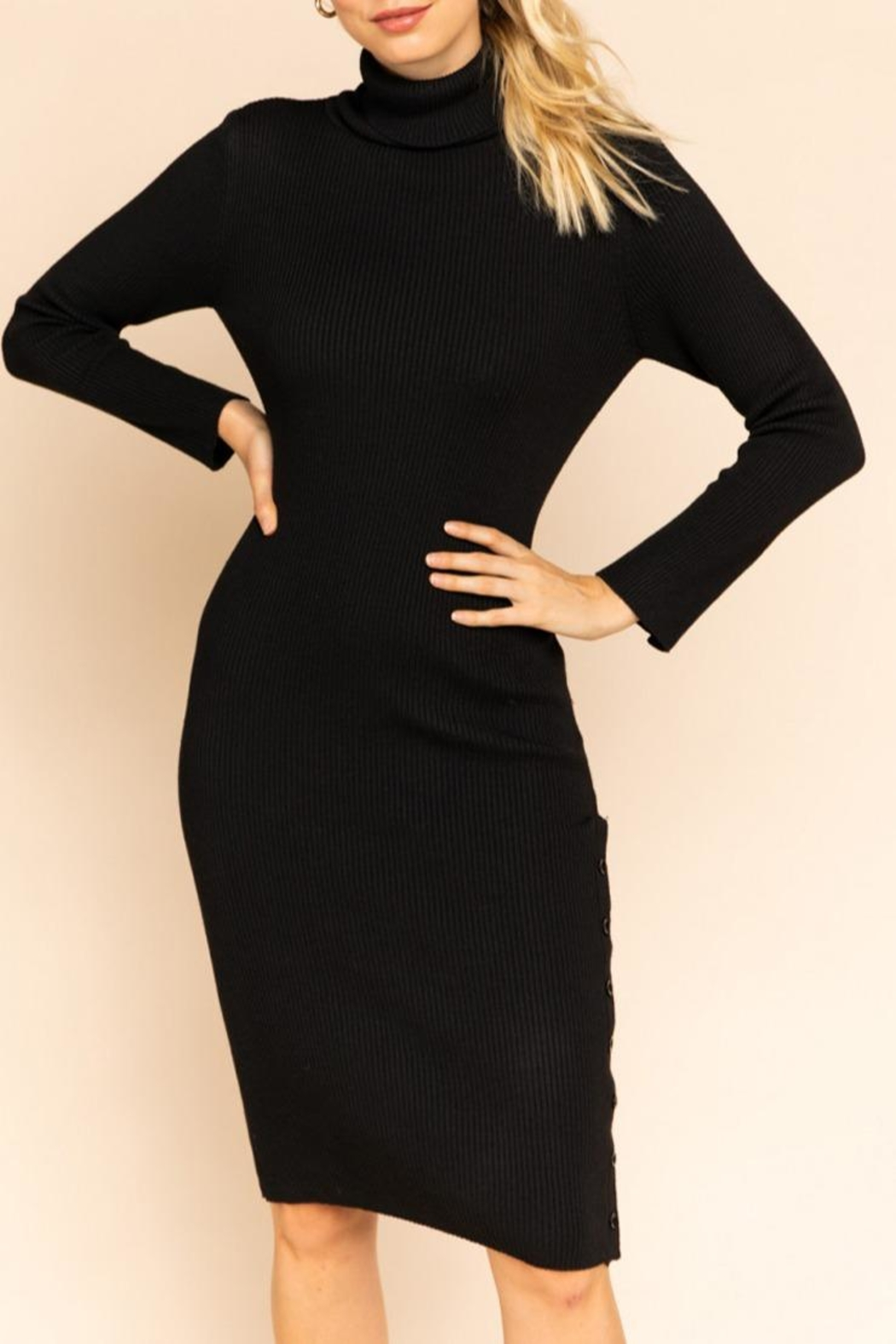 Gilli Turtleneck Sweater Dress - Front Cropped Image