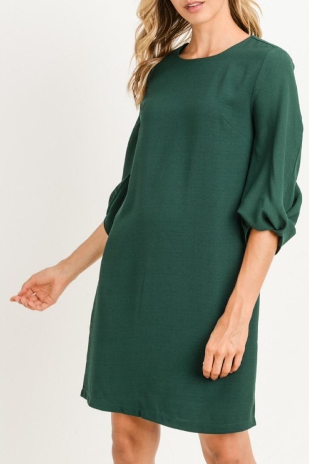 Gilli Twist Sleeve Dress - Main Image