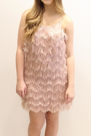 Glamorous Delightful Fringe Dress - Product Mini Image