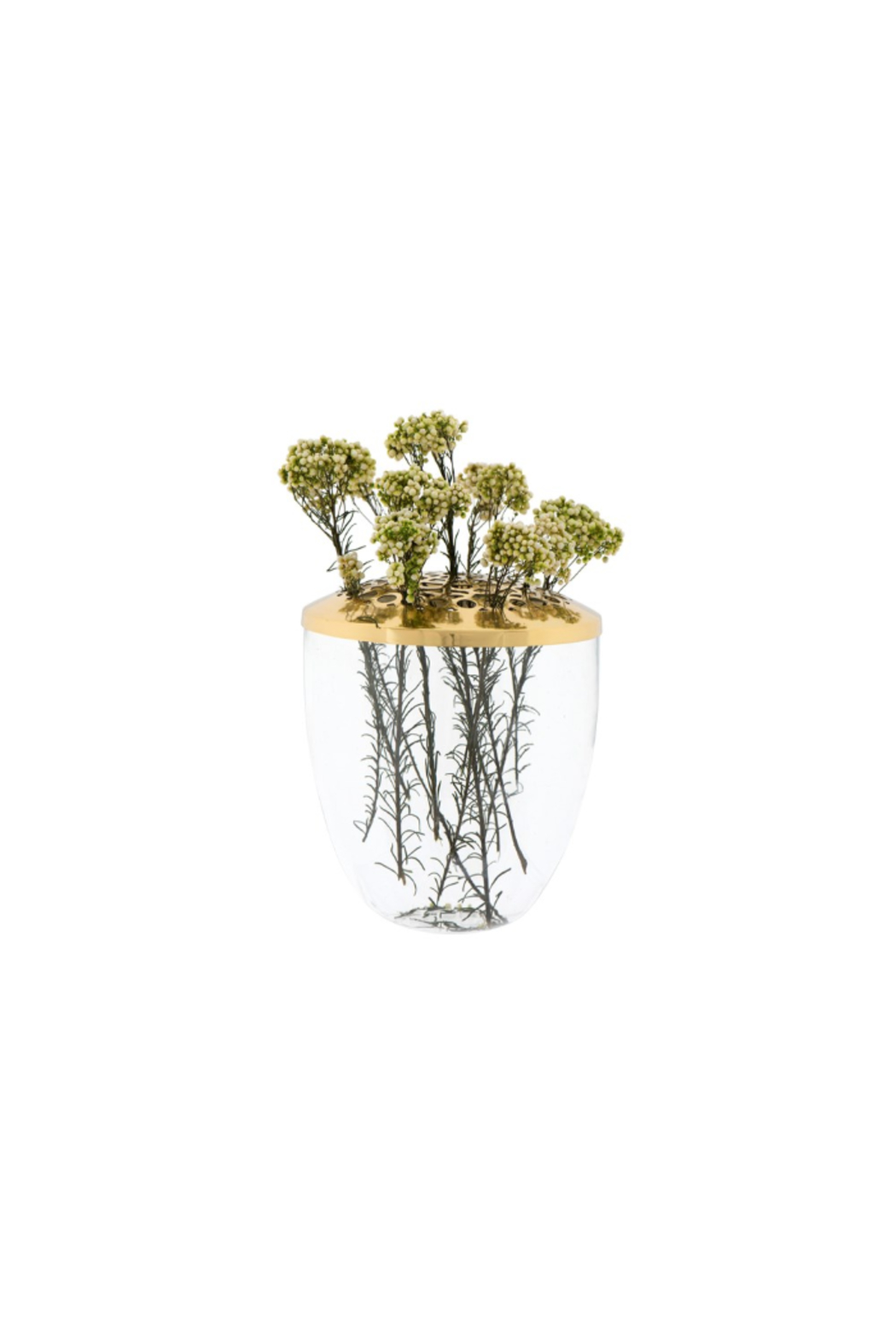The Birds Nest GLASS VASE WITH METAL LID-BRASS - Main Image
