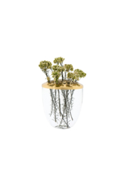 The Birds Nest GLASS VASE WITH METAL LID-BRASS - Front cropped
