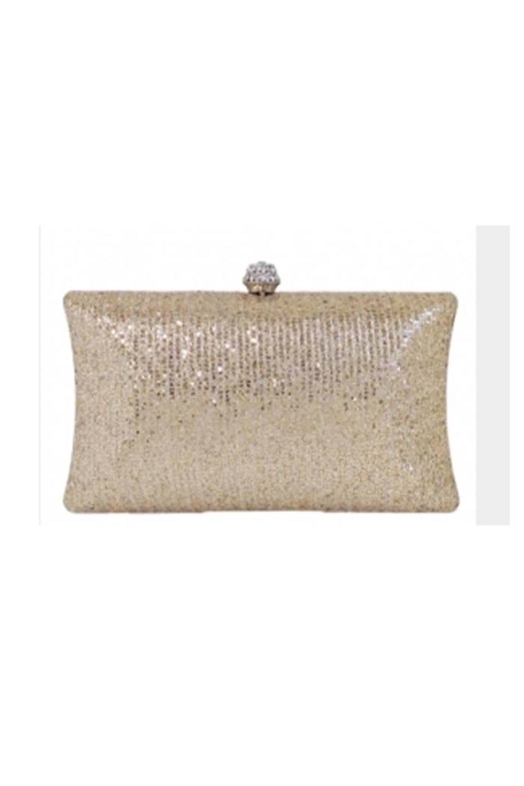 JNB Glitter Evening Box Clutch - Front Cropped Image