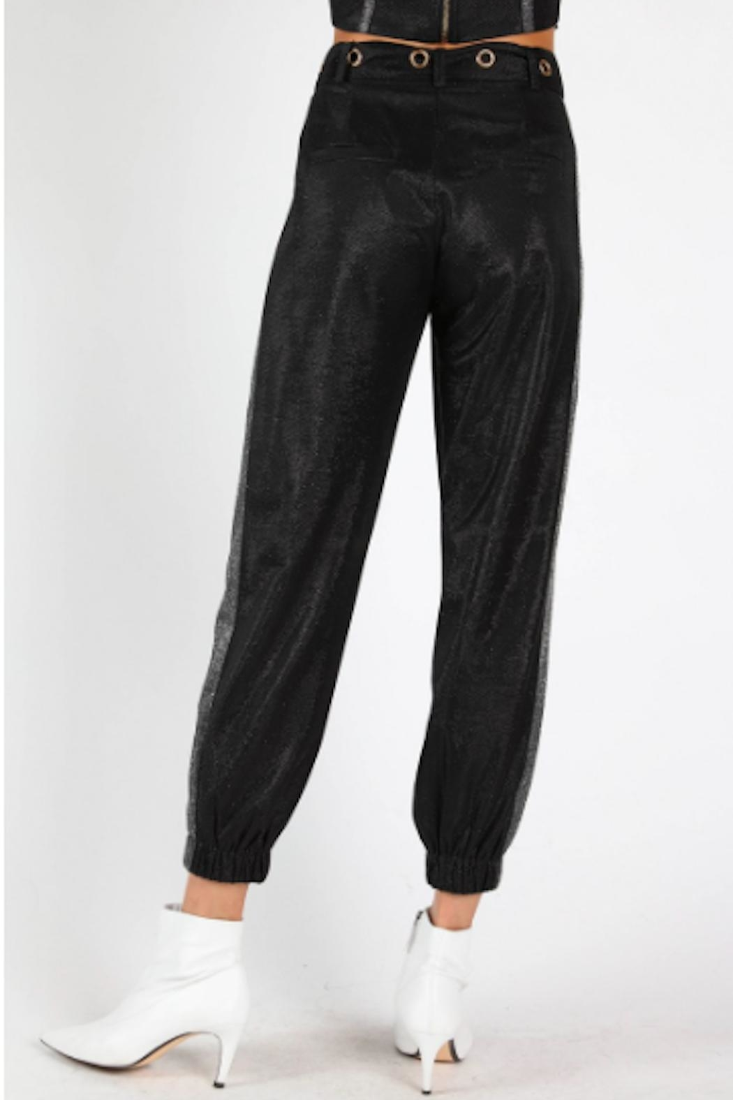 TIMELESS Glitter Joggers - Back Cropped Image
