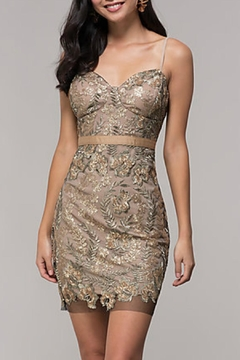 Shoptiques Product: Gold Embroidered-Mesh Party-Dress