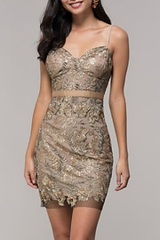 Just Me Gold Embroidered-Mesh Party-Dress - Product Mini Image