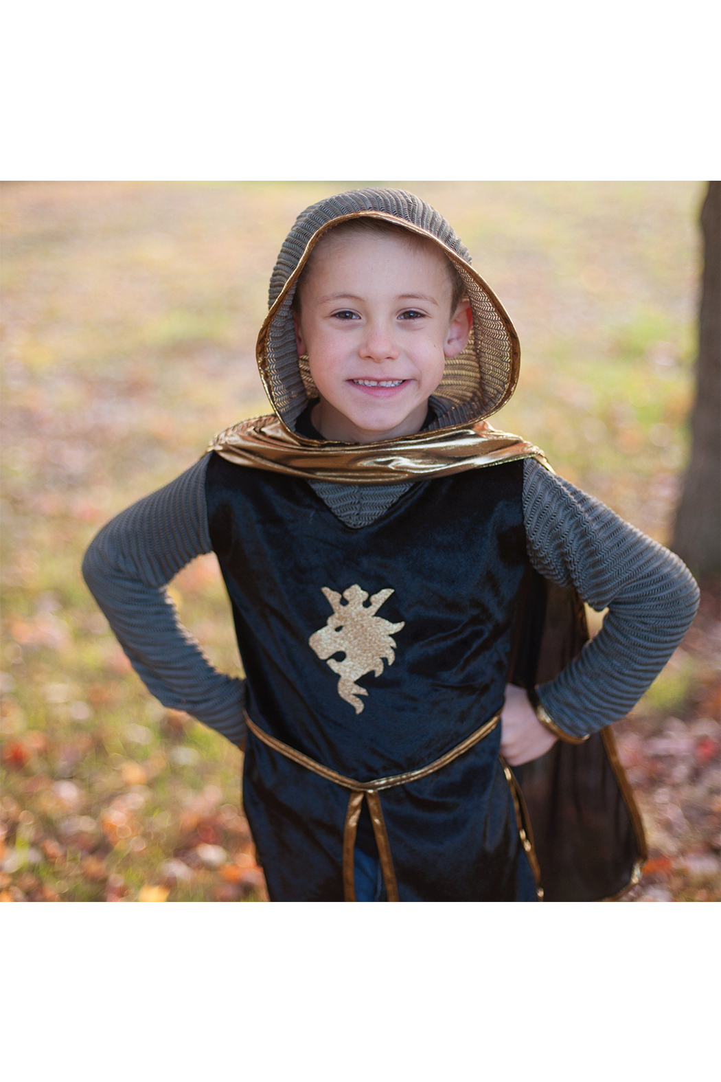Great Pretenders  Gold Knight Tunic, Cape & Crown Set - Main Image