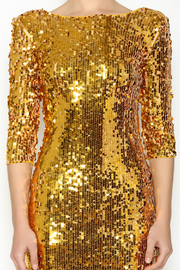 Gold Sequin Dress - Other