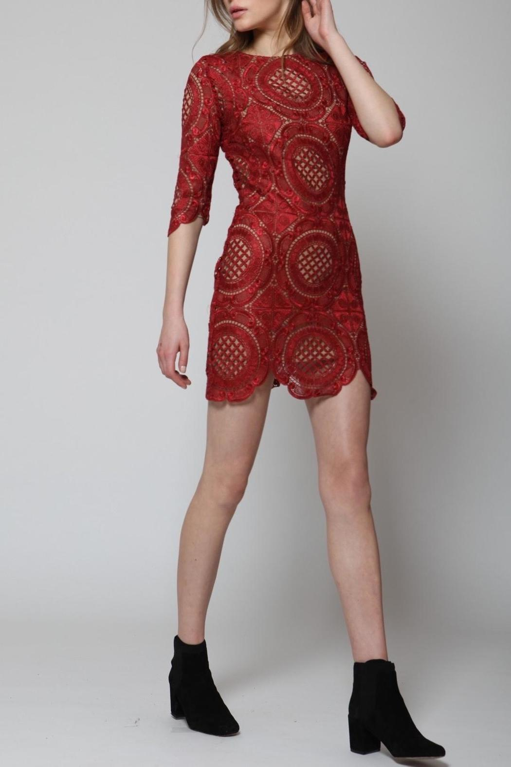 Goldie Lace Mini Dress - Back Cropped Image