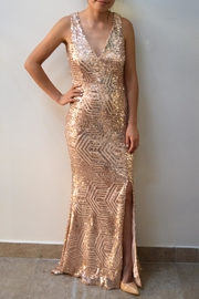Red Clover Goldrose Sequin Gala - Front cropped