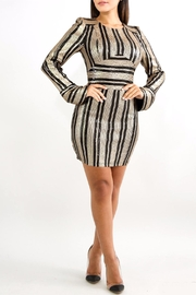 Good Time Sequin Mini Dress - Front cropped