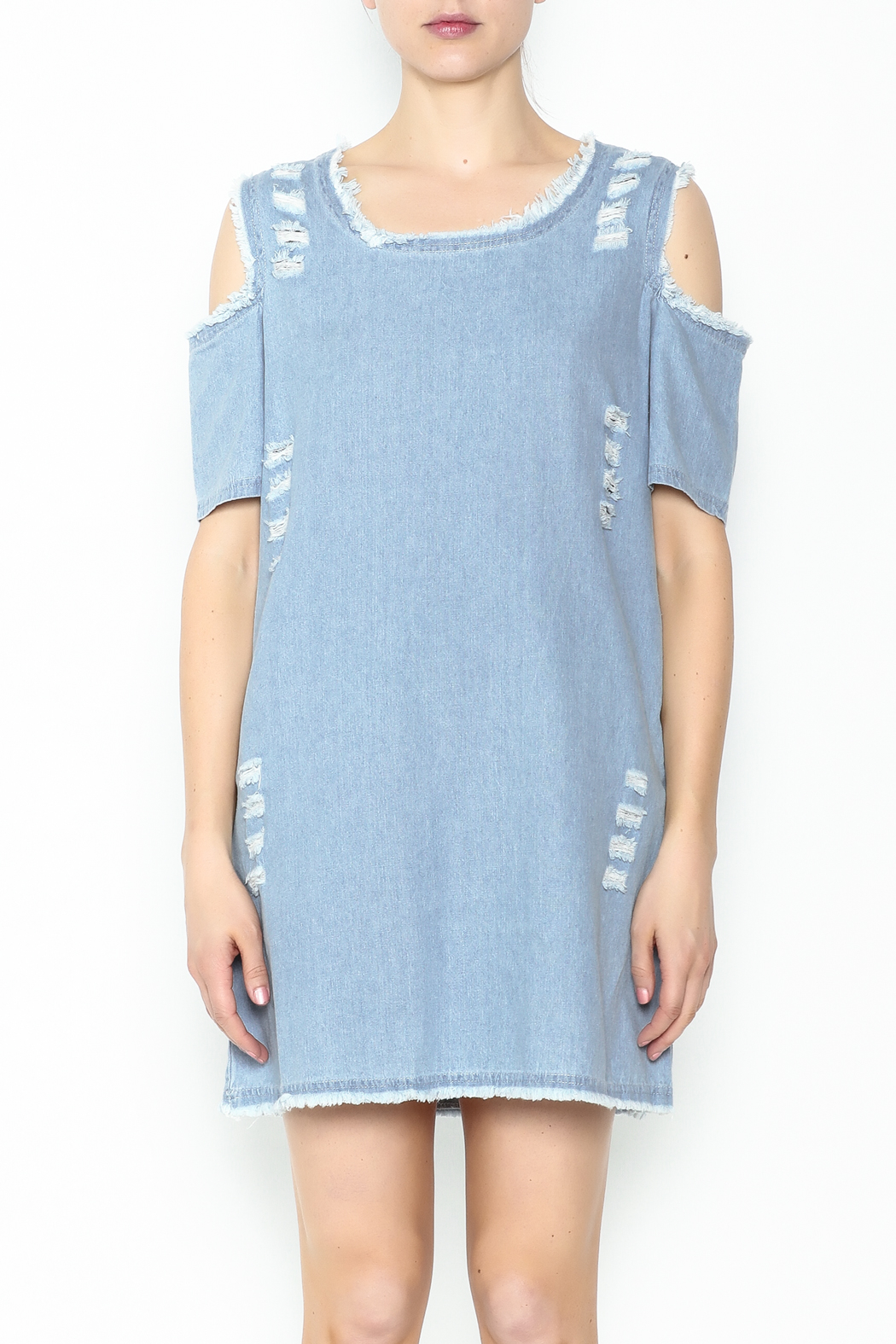 Goodtime Denim Tunic Dress - Main Image