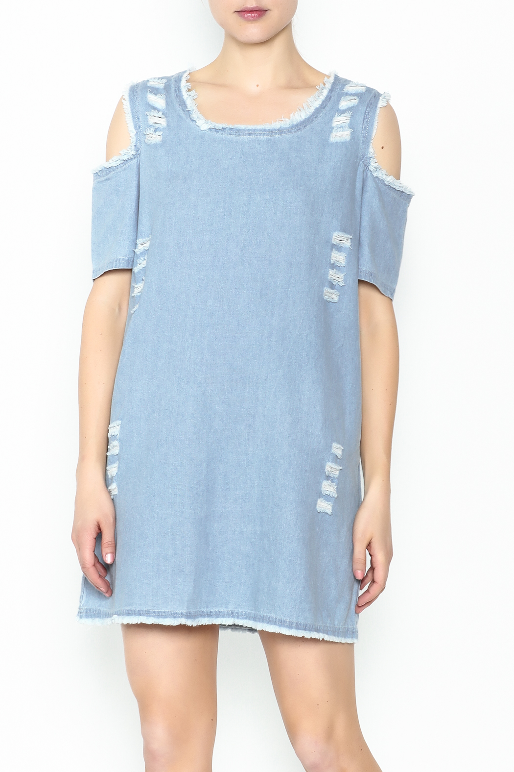 Goodtime Denim Tunic Dress - Front Cropped Image