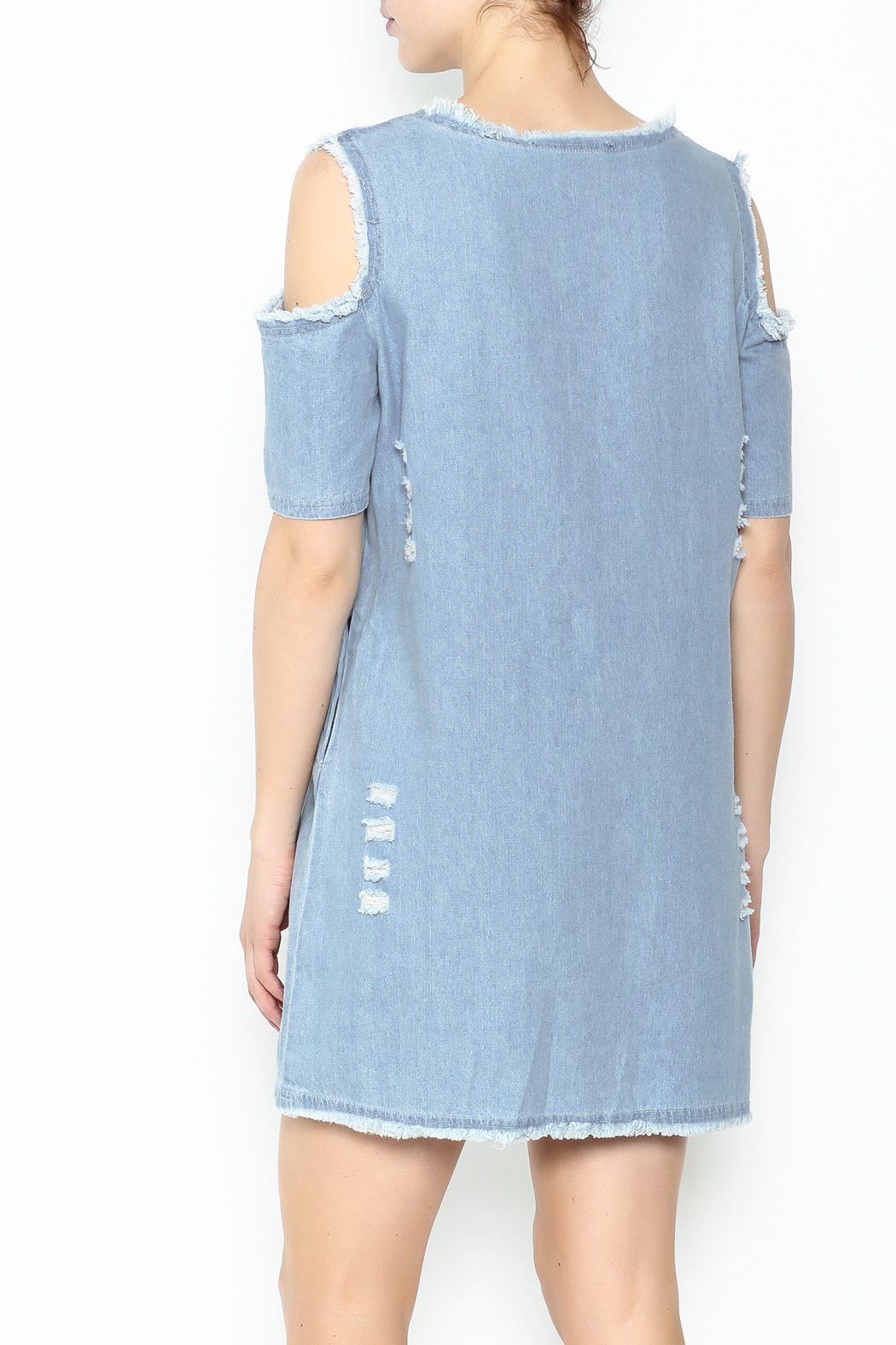 Goodtime Denim Tunic Dress - Back Cropped Image
