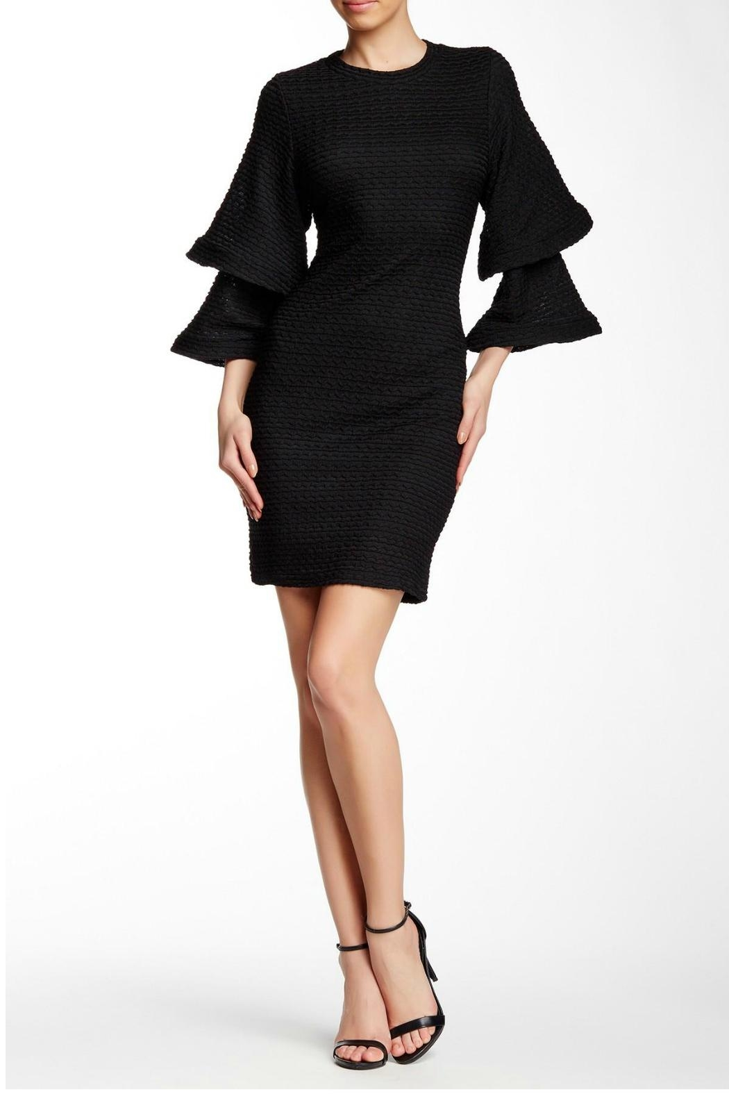 Gracia Crease Bell-Sleeved Dress - Main Image