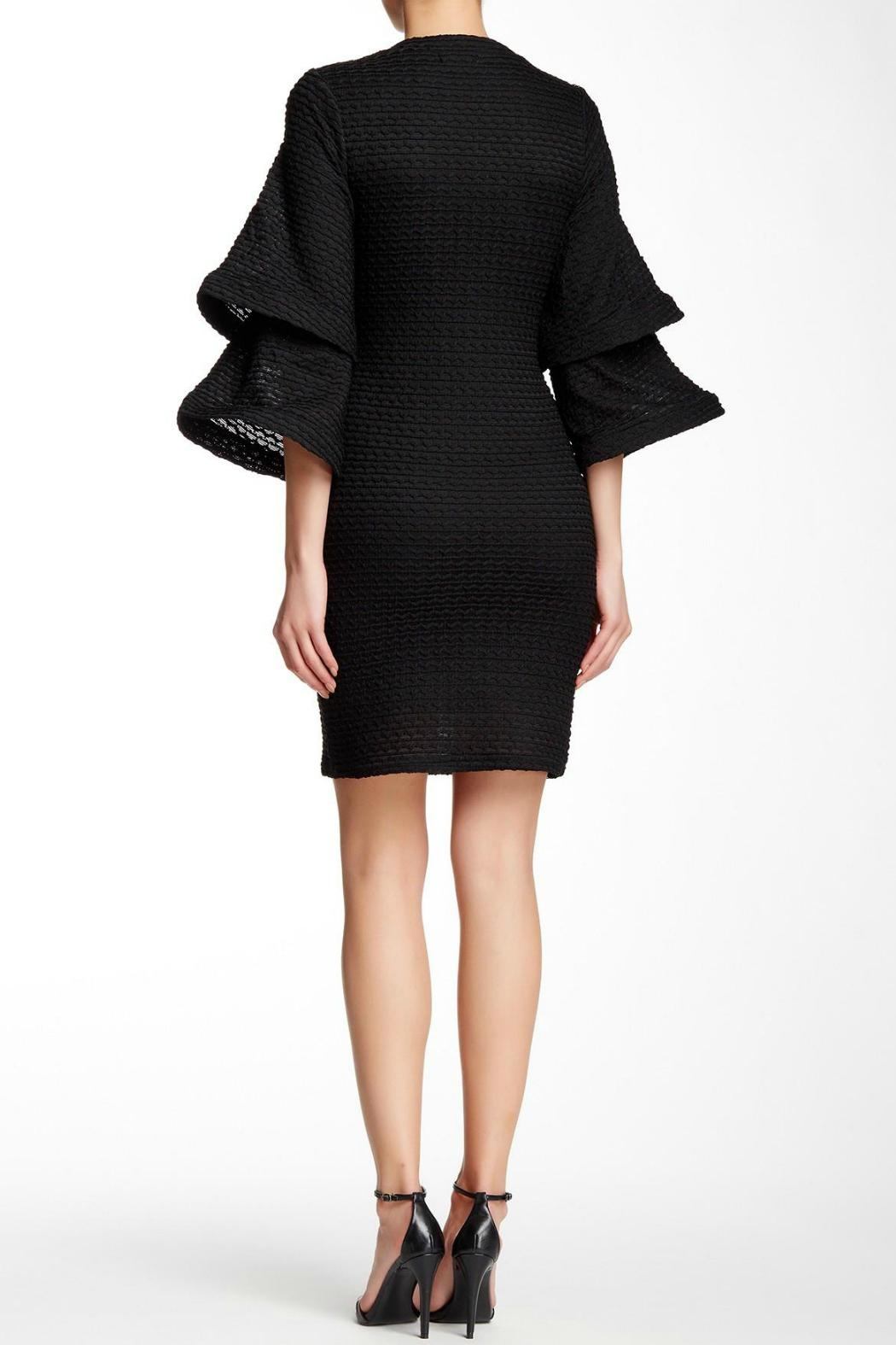 Gracia Crease Bell-Sleeved Dress - Front Full Image