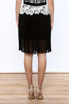 Gracia Eyelet Pleated Skirt - Alternate List Image