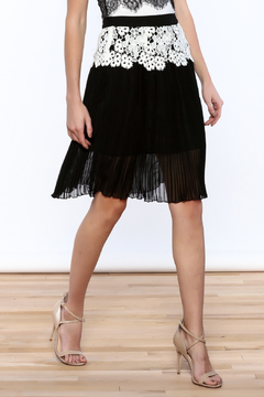 Gracia Eyelet Pleated Skirt - Product List Image