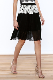 Gracia Eyelet Pleated Skirt - Front cropped