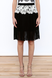 Gracia Eyelet Pleated Skirt - Side cropped