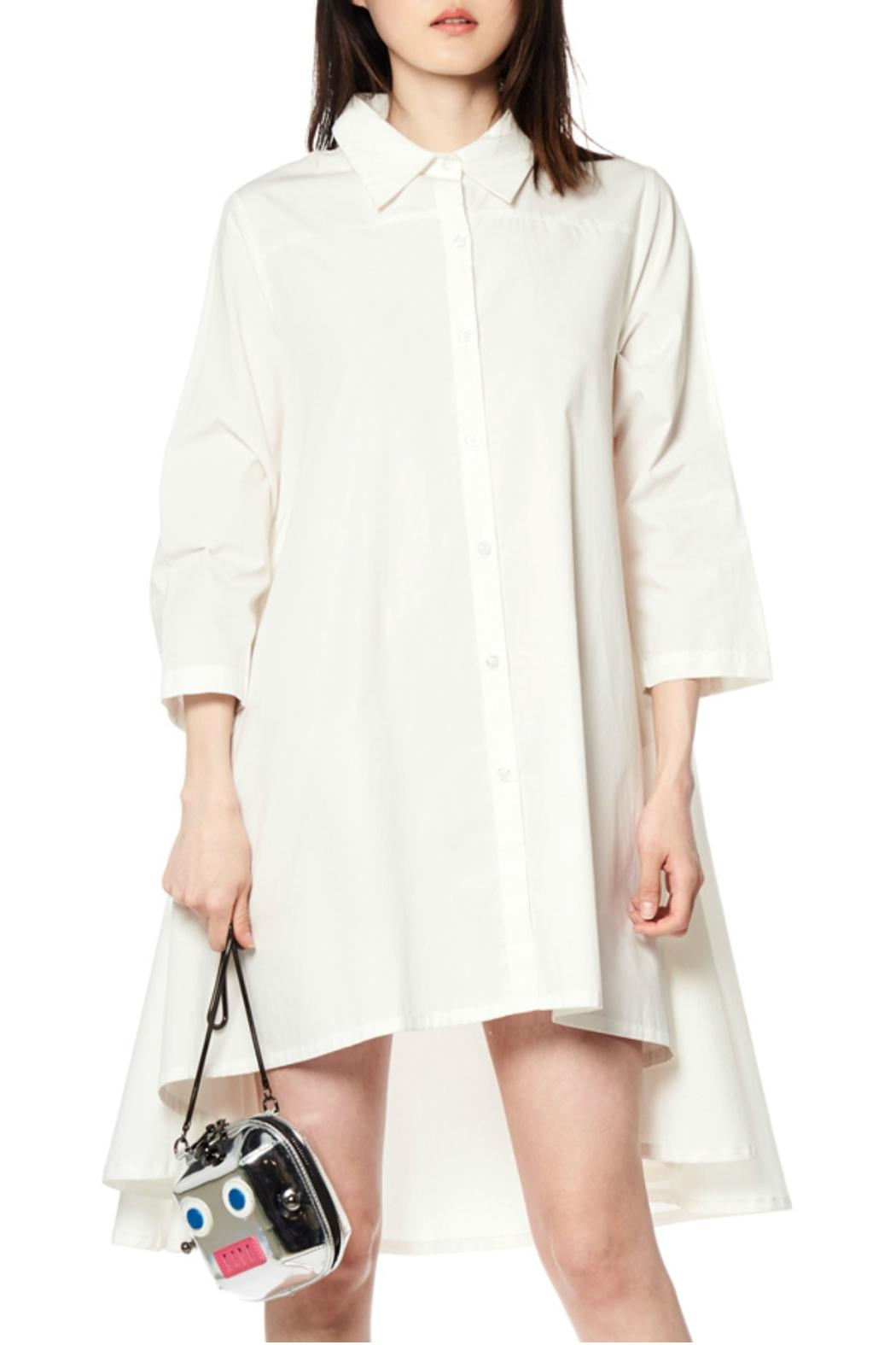 Gracia Flare Long Sleeve Dress - Front Cropped Image