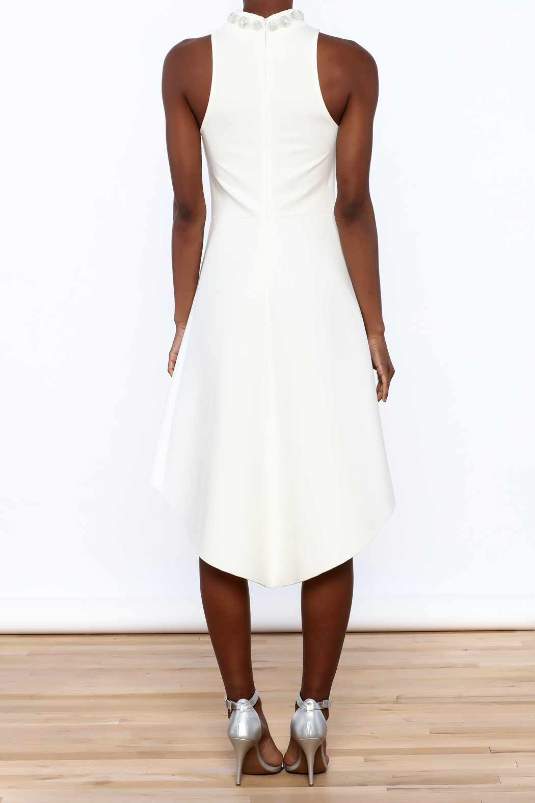 Gracia High Neck Dress - Back Cropped Image