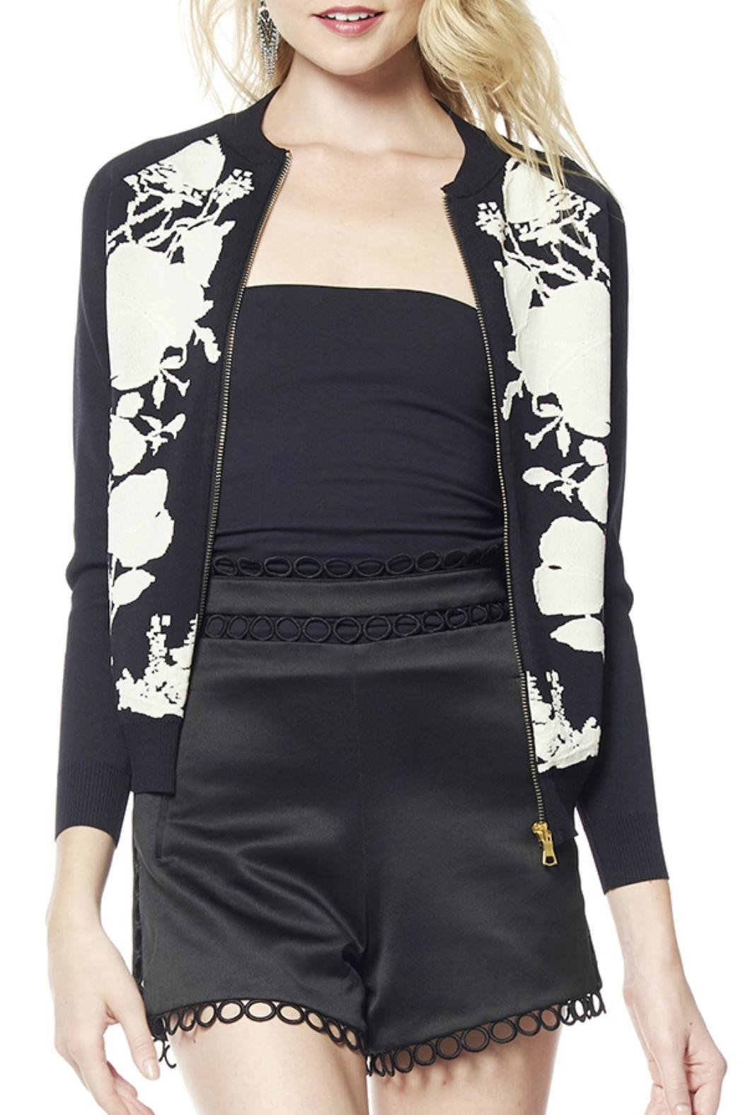 Gracia Leaf Embroidery Jacket - Front Cropped Image