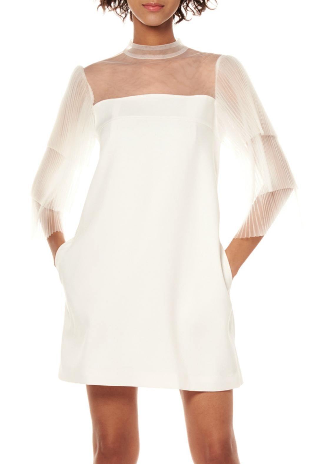 Gracia Pleats Sleeve Dress - Front Cropped Image