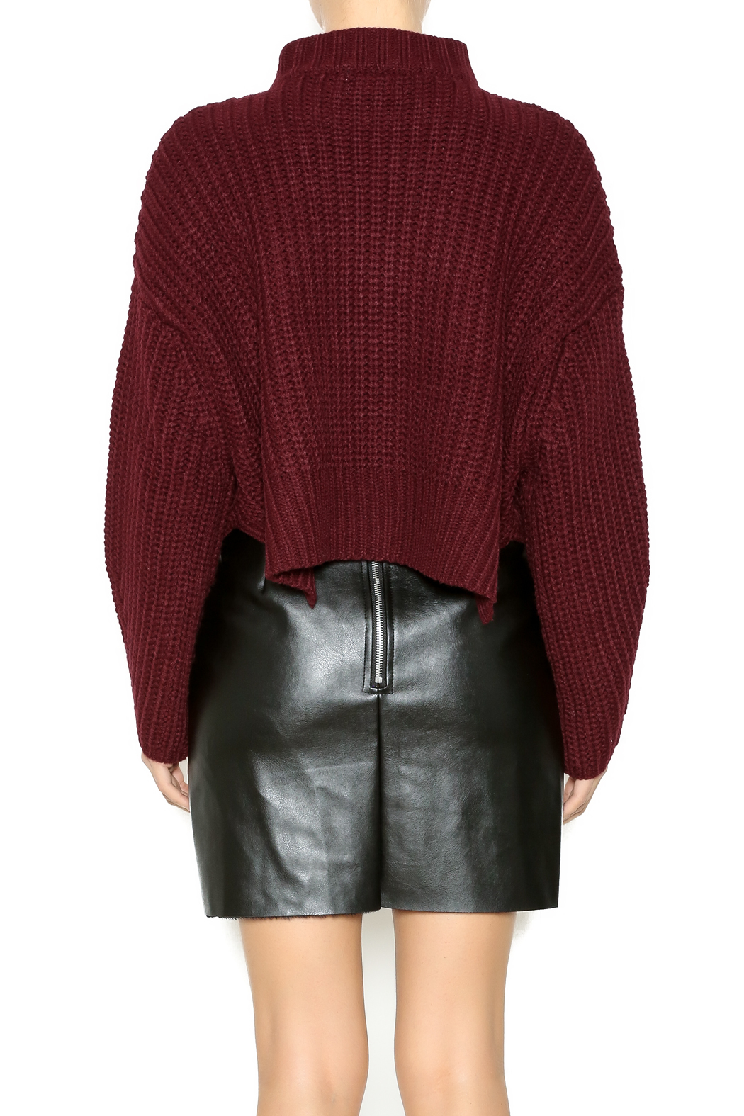 Gracia Short Sweater - Back Cropped Image