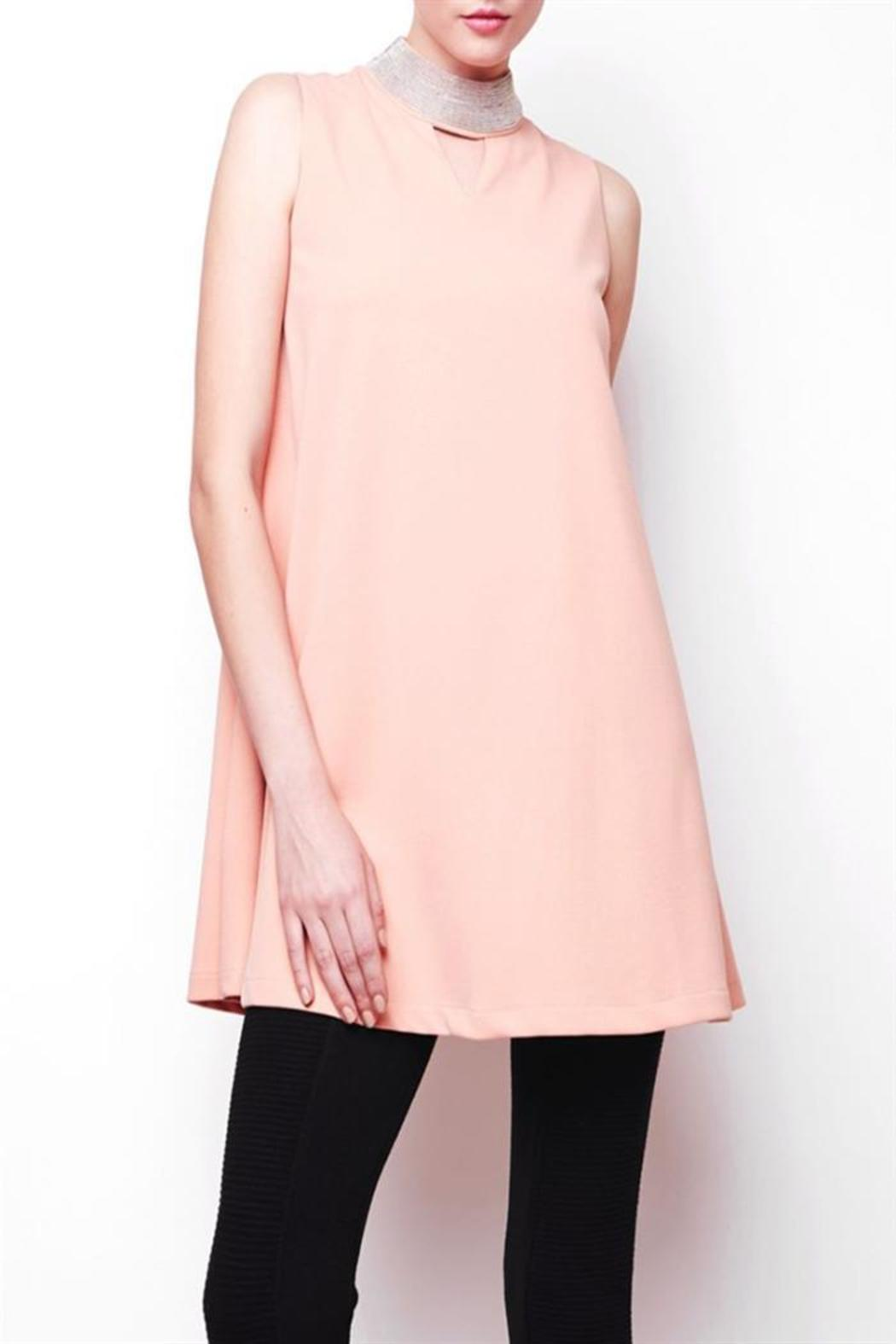 Gracia Stud Neck Flair Dress - Front Cropped Image