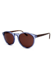 AJ Morgan Grad School Sunglasses - Front cropped