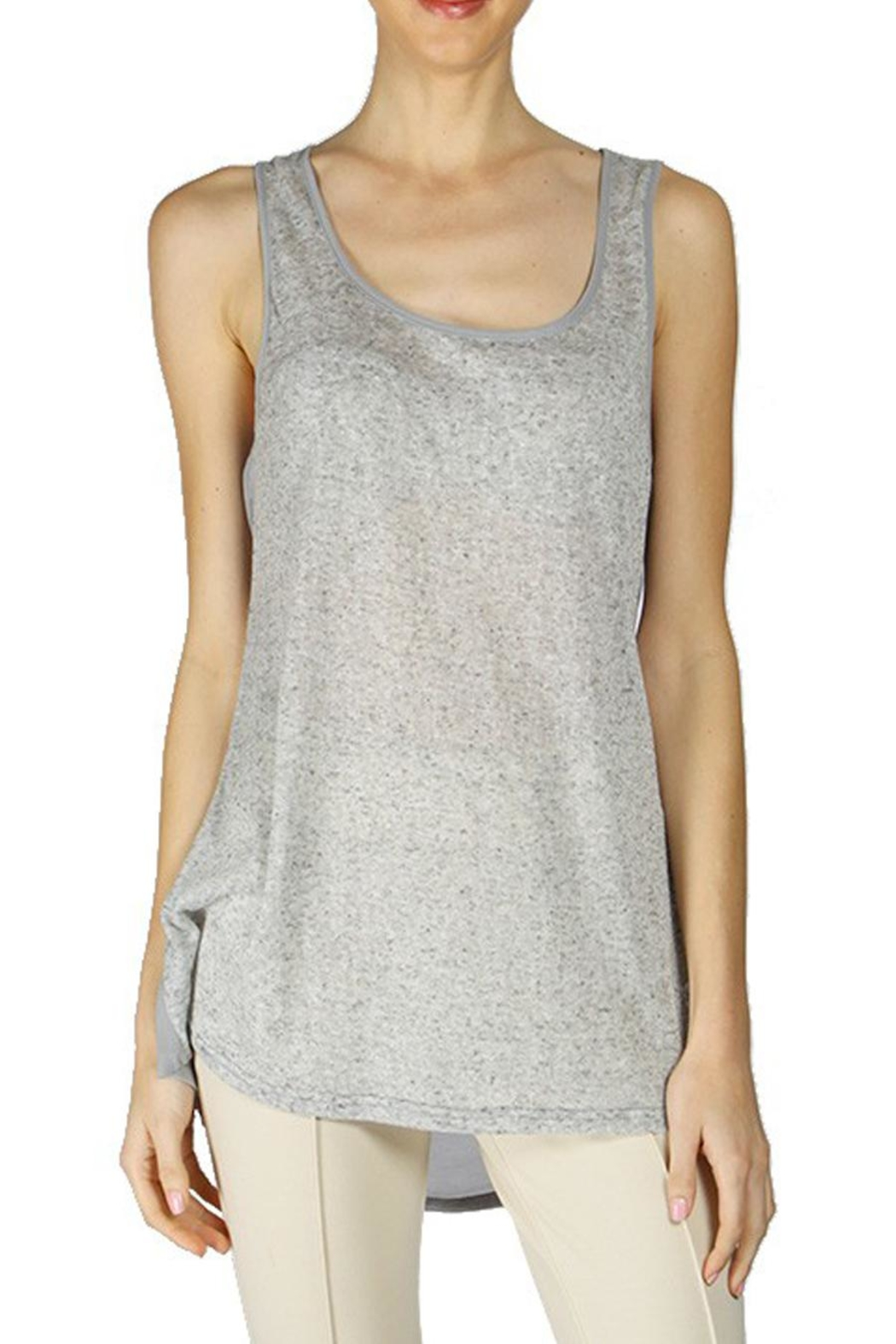 The Vintage Valet Gray Sheer Tanktop - Front Full Image