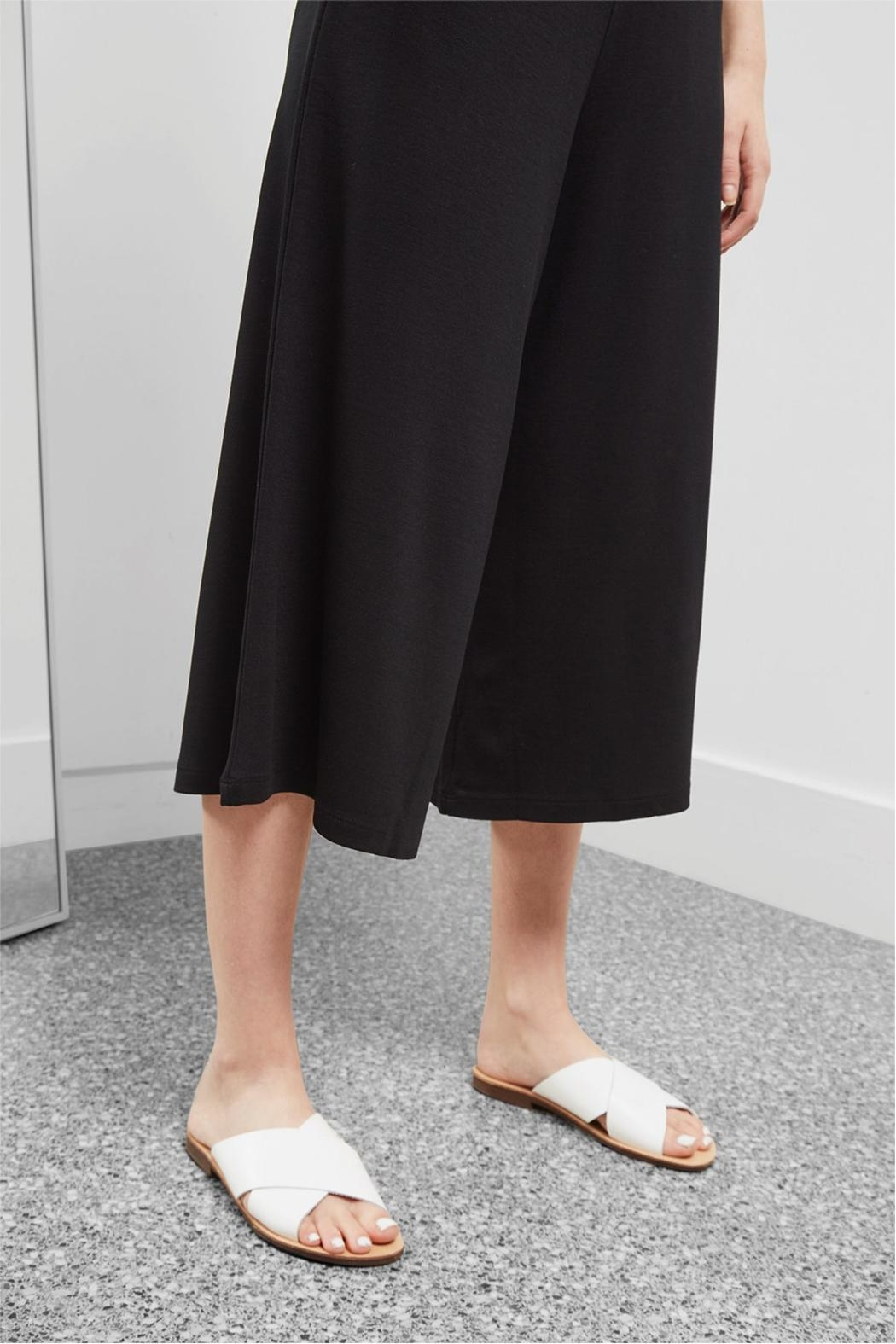 Great Plains Polly Ponte Culottes - Back Cropped Image