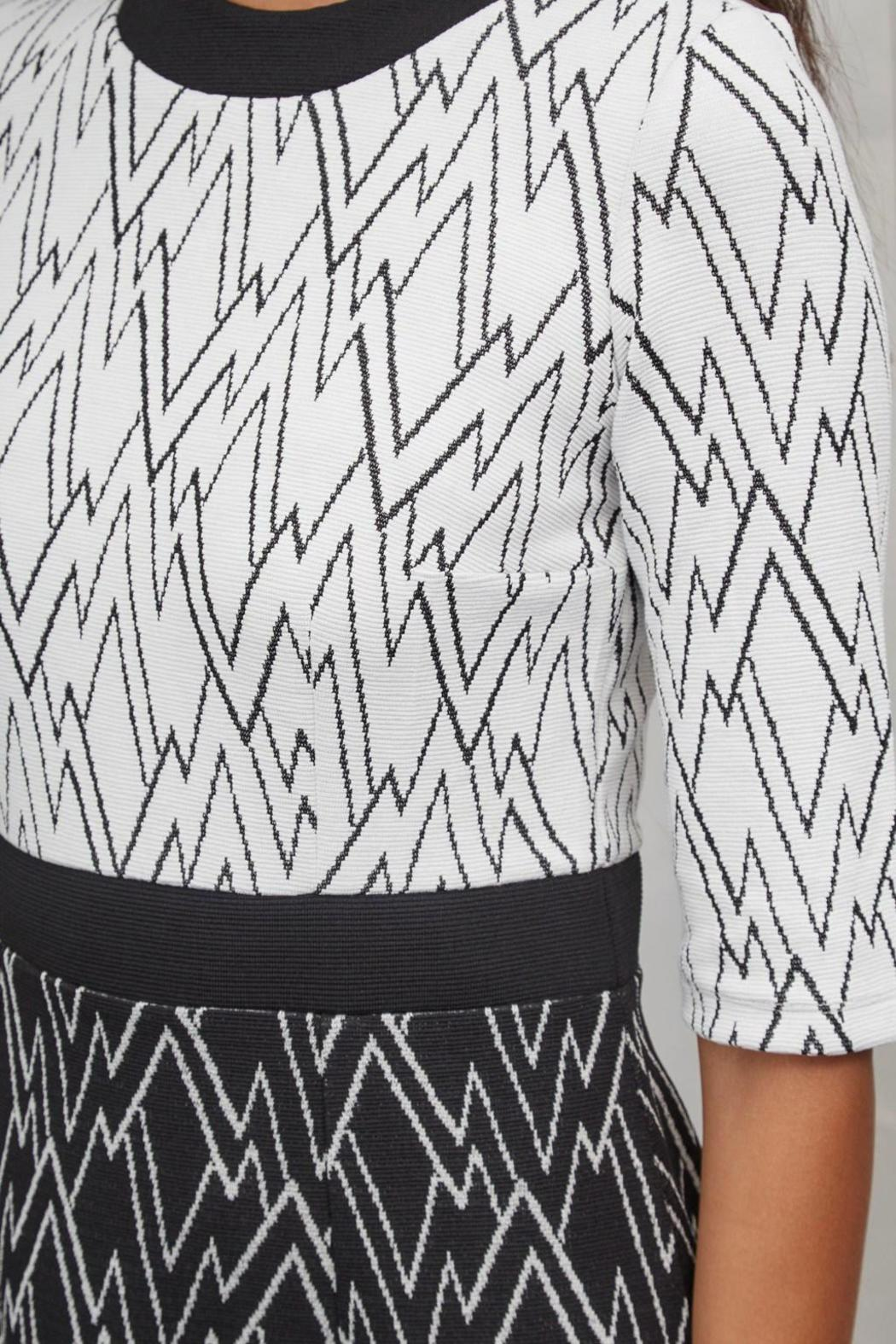 Great Plains Zigzag Dress - Front Full Image