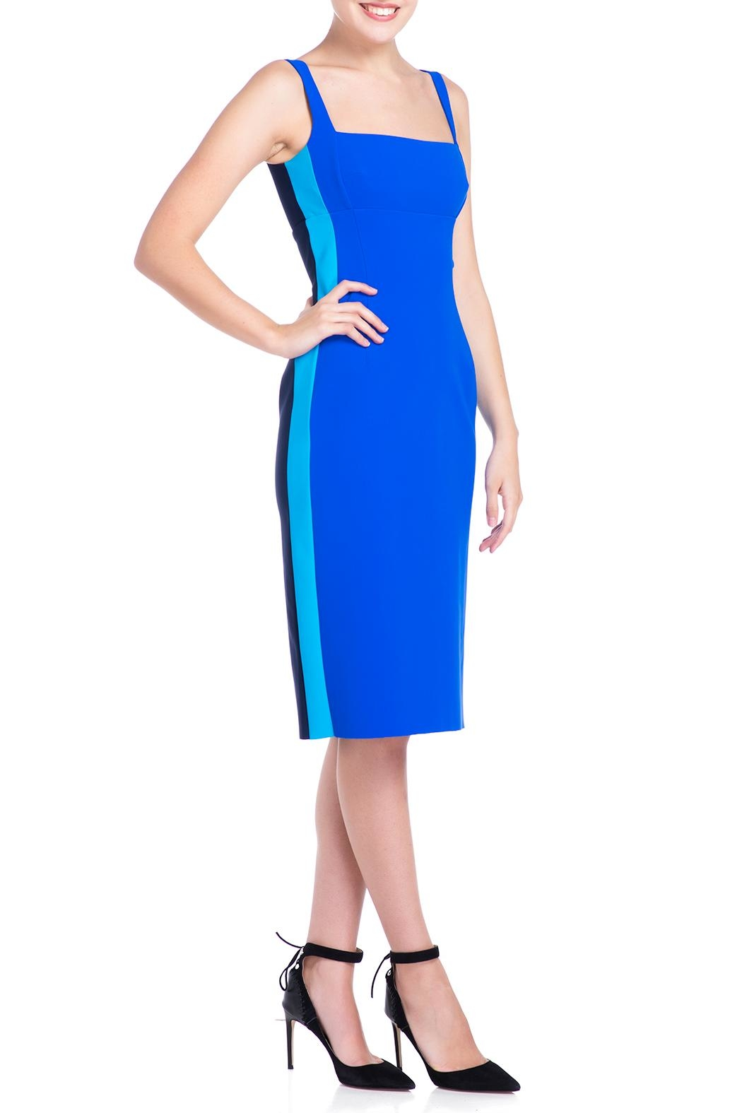 Greta Constantine Fitted Cocktail Dress - Back Cropped Image