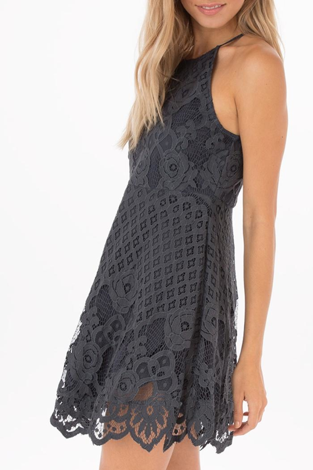 Black Swan Grey Lace Dress - Front Full Image