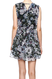 Greylin Dali Silk Dress - Back cropped