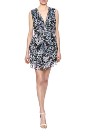 Greylin Dali Silk Dress - Front full body